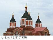 Купола церкви. Стоковое фото, фотограф Андрей Мирный / Фотобанк Лори