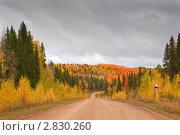 Купить «Осенний пейзаж с дорогой, Республика Коми, Россия», фото № 2830260, снято 20 сентября 2011 г. (c) Алексей Зарубин / Фотобанк Лори