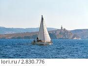 Купить «На яхте под белыми парусами по Средиземному морю на фоне острова Селмунетт, Мальта», фото № 2830776, снято 19 августа 2011 г. (c) Fro / Фотобанк Лори