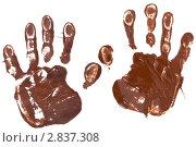 Отпечатки рук. Стоковое фото, фотограф Дмитрий Сечин / Фотобанк Лори