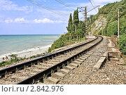 Купить «Одноколейная железная дорога на участке Адлер - Туапсе, идущая по берегу моря», фото № 2842976, снято 31 августа 2011 г. (c) Владимир Сергеев / Фотобанк Лори