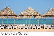 Пляж Фуджейры ОАЭ (2008 год). Стоковое фото, фотограф Екатерина Воякина / Фотобанк Лори