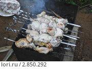 Купить «Шашлык из курицы», эксклюзивное фото № 2850292, снято 18 февраля 2019 г. (c) Алёшина Оксана / Фотобанк Лори