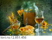Купить «Медовуха», фото № 2851456, снято 6 октября 2011 г. (c) Марина Володько / Фотобанк Лори