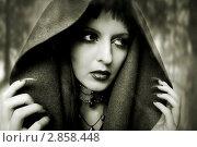 Купить «Портрет девушки в образе для хэллоуина. Ведьма, колдунья с готическим макияжем», фото № 2858448, снято 20 августа 2011 г. (c) katalinks / Фотобанк Лори