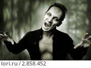 Купить «Портрет молодого мужчины в образе ночного вампира или зомби. Образ и стиль для хэллоуин», фото № 2858452, снято 24 августа 2011 г. (c) katalinks / Фотобанк Лори