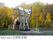 Купить «Добыча нефти. Нефтекачалка», фото № 2858636, снято 7 октября 2011 г. (c) Дудакова / Фотобанк Лори