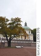 Купить «Ораниенбаум (Ломоносов). Фрагмент Большого дворца», фото № 2859976, снято 30 сентября 2011 г. (c) Юлия  Лесина / Фотобанк Лори
