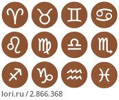 Купить «Деревянные знаки зодиака», иллюстрация № 2866368 (c) Georgios Kollidas / Фотобанк Лори