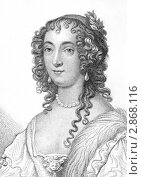 Купить «Английская аристократка и графиня Энн Вилье», иллюстрация № 2868116 (c) Georgios Kollidas / Фотобанк Лори