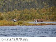 Вывозка леса из тайги. Стоковое фото, фотограф Павел Спирин / Фотобанк Лори