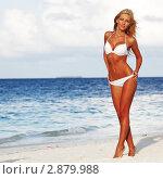 Купить «Девушка на пляже», фото № 2879988, снято 21 сентября 2011 г. (c) Иван Михайлов / Фотобанк Лори