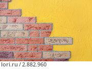 Купить «Муляж кирпичной стены», фото № 2882960, снято 4 июля 2010 г. (c) Losevsky Pavel / Фотобанк Лори