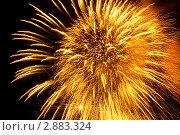 Купить «Пиротехническое шоу. Яркие огни взрываются в ночном небе», фото № 2883324, снято 9 мая 2009 г. (c) Losevsky Pavel / Фотобанк Лори