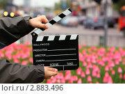 Купить «Мальчик со съемочной хлопушкой на фоне тюльпанов», фото № 2883496, снято 6 мая 2010 г. (c) Losevsky Pavel / Фотобанк Лори
