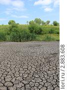 Купить «Дно пересохшего пруда жарким летом», эксклюзивное фото № 2883608, снято 12 июня 2011 г. (c) Александра Меланич / Фотобанк Лори