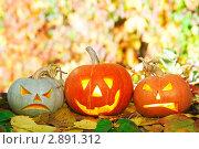 Хеллоуин, три фонаря из тыквы. Стоковое фото, фотограф Иван Коваленко / Фотобанк Лори