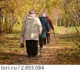 Купить «Прогулка в парке», фото № 2893084, снято 11 октября 2011 г. (c) Насыров Руслан / Фотобанк Лори
