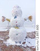 Купить «Снеговик», эксклюзивное фото № 2897600, снято 7 января 2011 г. (c) Ирина Грищенко / Фотобанк Лори
