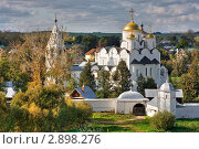 Покровский монастырь, Суздаль (2011 год). Стоковое фото, фотограф Владимир Сазонов / Фотобанк Лори