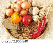 Овощи и специи на плетеном подносе. Стоковое фото, фотограф Никонович Светлана / Фотобанк Лори