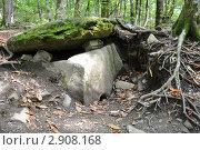 Купить «Плиточный дольмен в лесу», фото № 2908168, снято 9 октября 2011 г. (c) Анна Мартынова / Фотобанк Лори