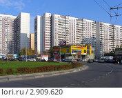 Купить «Вид на Новокосинскую улицу. Новокосино. Москва», эксклюзивное фото № 2909620, снято 20 октября 2011 г. (c) lana1501 / Фотобанк Лори