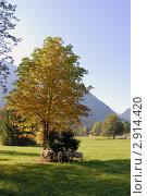 Альпийский пейзаж с барашками (2011 год). Стоковое фото, фотограф Марина Коробанова / Фотобанк Лори