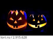 Купить «Тыква на Хэллоуин», фото № 2915628, снято 29 октября 2011 г. (c) Ольга Денисова / Фотобанк Лори