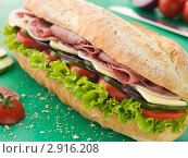 Купить «Толстый сандвич», фото № 2916208, снято 8 июня 2007 г. (c) Monkey Business Images / Фотобанк Лори