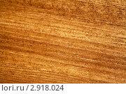 Купить «Деревянная поверхность», фото № 2918024, снято 25 октября 2011 г. (c) ElenArt / Фотобанк Лори