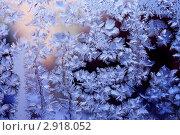 Купить «Морозный узор на стекле, зимняя фантазия», фото № 2918052, снято 9 февраля 2010 г. (c) ElenArt / Фотобанк Лори