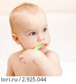 Купить «Маленький ребёнок чистит зубы», фото № 2925044, снято 31 октября 2009 г. (c) Дмитрий Наумов / Фотобанк Лори