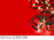 Купить «Рождественская гирлянда», фото № 2925248, снято 28 сентября 2008 г. (c) Дмитрий Наумов / Фотобанк Лори