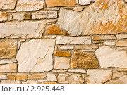 Купить «Текстура каменной стены», фото № 2925448, снято 9 марта 2008 г. (c) Дмитрий Наумов / Фотобанк Лори