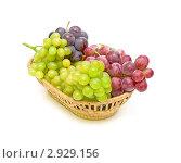 Купить «Виноград в плетеной корзинке», фото № 2929156, снято 4 ноября 2011 г. (c) Ласточкин Евгений / Фотобанк Лори