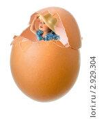 Купить «Маленькая девочка выглядывает из куриного яйца, коллаж», фото № 2929304, снято 5 июня 2010 г. (c) Алексей Сергеев / Фотобанк Лори