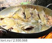 Купить «Жареная рыба», фото № 2930068, снято 14 июня 2010 г. (c) Гнездилова Кристина / Фотобанк Лори