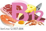 Купить «Содержание витамина В12 в продуктах», иллюстрация № 2937684 (c) ivolodina / Фотобанк Лори