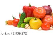 Купить «Свежие овощи», фото № 2939272, снято 13 октября 2011 г. (c) Ласточкин Евгений / Фотобанк Лори