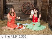 Купить «Молодые женщины обедают на сеновале», фото № 2945336, снято 10 апреля 2011 г. (c) Сергей Дубров / Фотобанк Лори