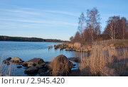 Купить «Пейзаж Высоцка», фото № 2945420, снято 29 октября 2011 г. (c) Марина Гуменюк / Фотобанк Лори