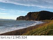 Бухта Шлюпочная, Авачинская губа, полуостров Камчатка (2011 год). Стоковое фото, фотограф А. А. Пирагис / Фотобанк Лори