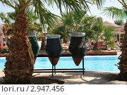 Купить «Бассейн в Египте», фото № 2947456, снято 31 октября 2010 г. (c) Робул Дмитрий / Фотобанк Лори
