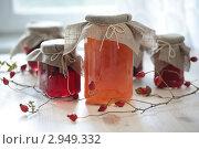 Купить «Баночки с домашними заготовками на зиму», фото № 2949332, снято 26 сентября 2011 г. (c) Stockphoto / Фотобанк Лори