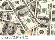 Купить «Доллары», фото № 2949872, снято 28 января 2020 г. (c) Валерий Литвинчук / Фотобанк Лори