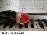 Роза, пианино, ноты. Стоковое фото, фотограф Марат Сафаров / Фотобанк Лори
