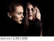 Две девушки в готическом стиле. Стоковое фото, фотограф Литвак Илья Леонидович / Фотобанк Лори