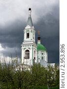Купить «Тверь. Свято-Екатерининский женский монастырь», фото № 2953896, снято 18 мая 2011 г. (c) Ольга Денисова / Фотобанк Лори