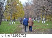 Бабушка с дедушкой. Стоковое фото, фотограф Галина Крючкова / Фотобанк Лори